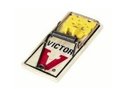 Victor M038 Easy Set Mouse Trap, 4-Pack